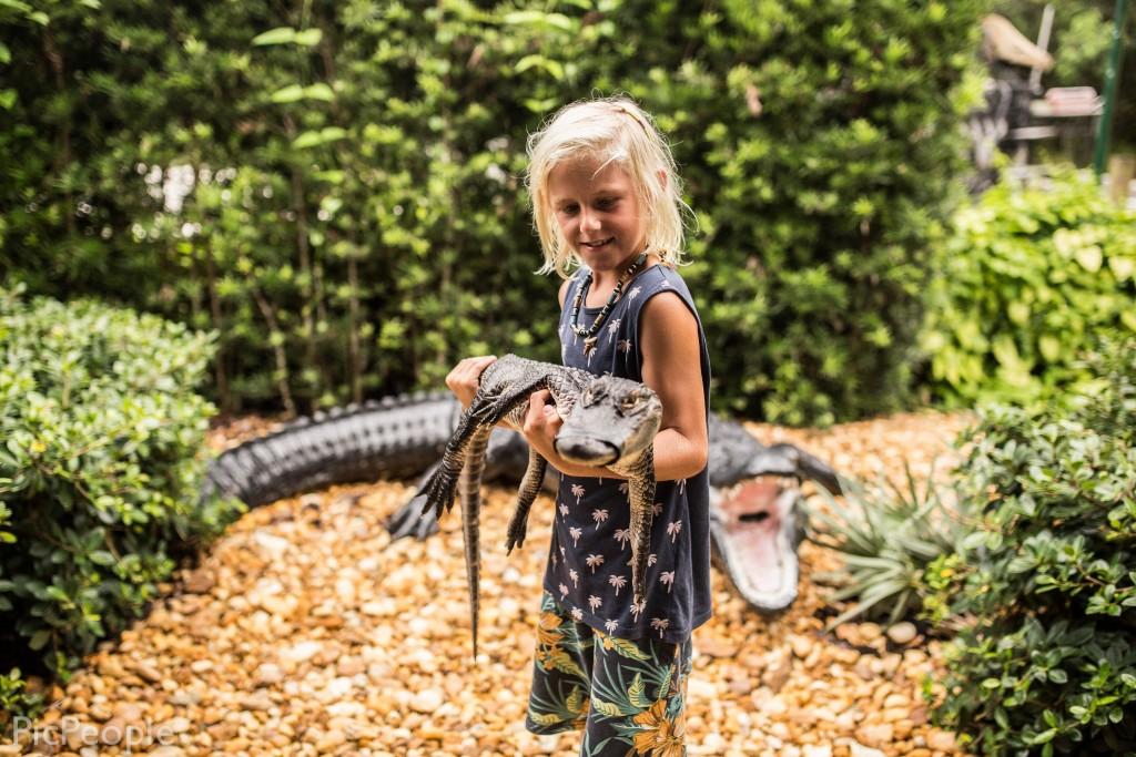 Jag höll i en alligator som var tre år och vägde ungefär runt 5-6 kilo.