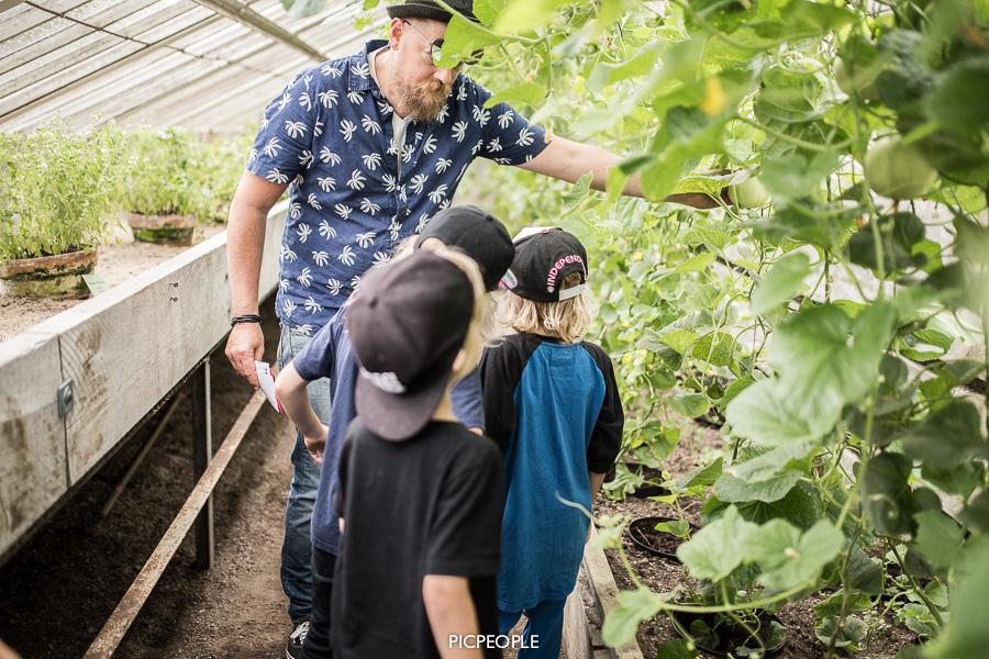 Krilles botaniska kunskaper sätts på prov i Melonhuset.
